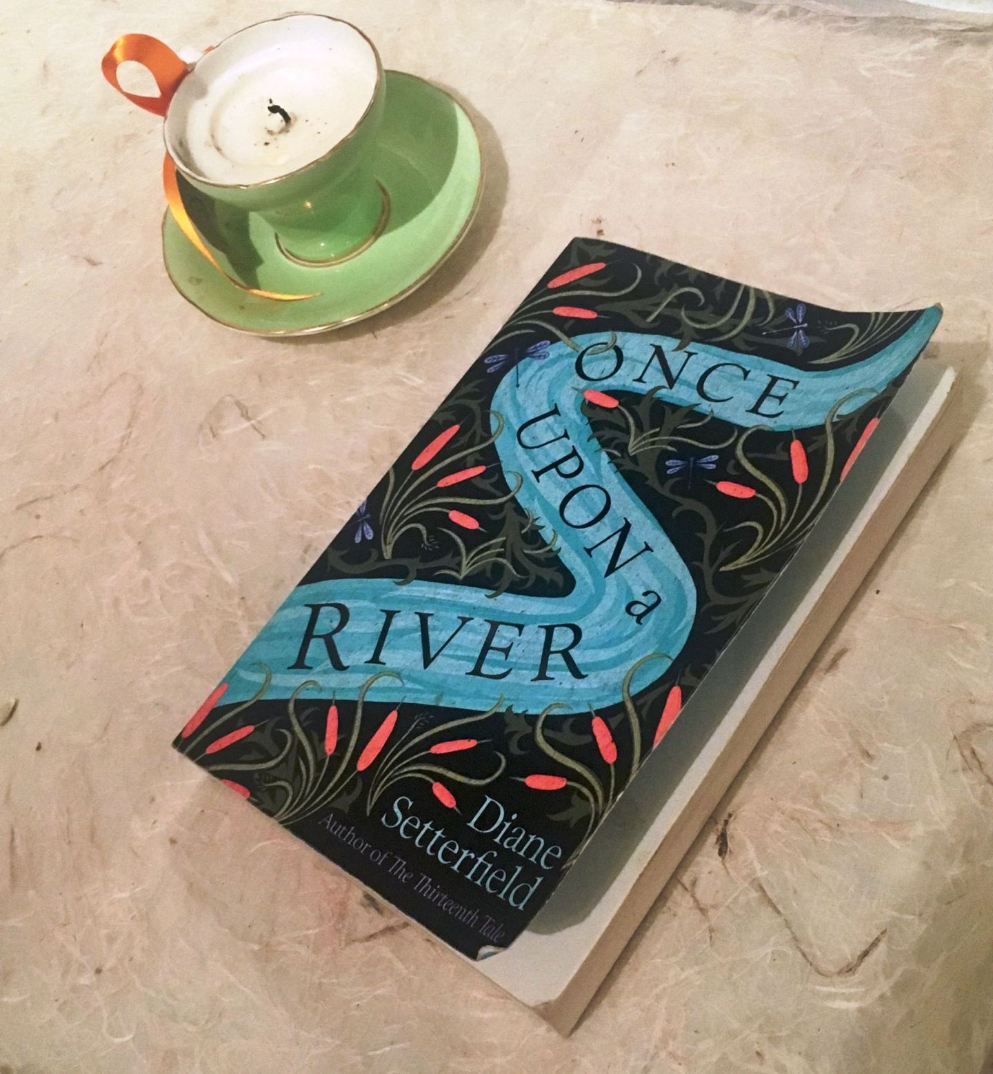 Once Upon A River: a novel to truly savour