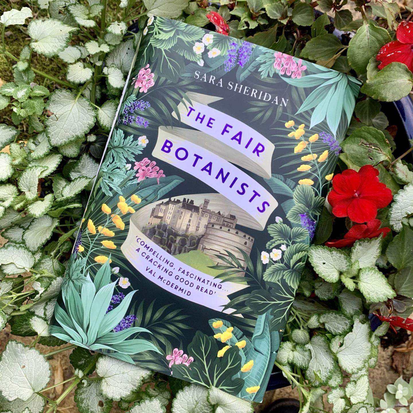 The Fair Botanists; immersive, rich and evocative