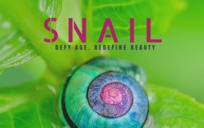 The Beauty in Snail