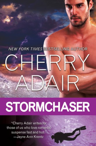 Review – Stormchaser by Cherry Adair