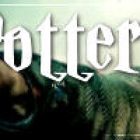 The Final Harry Potter Countdown: Fanmade Tributes