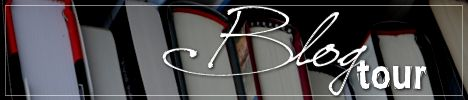 blog tour banner generic