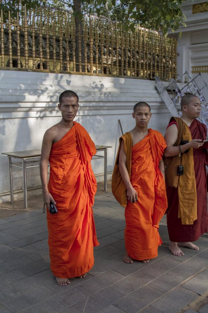 Monks visiting the Bodi Tree, Sri Lanka