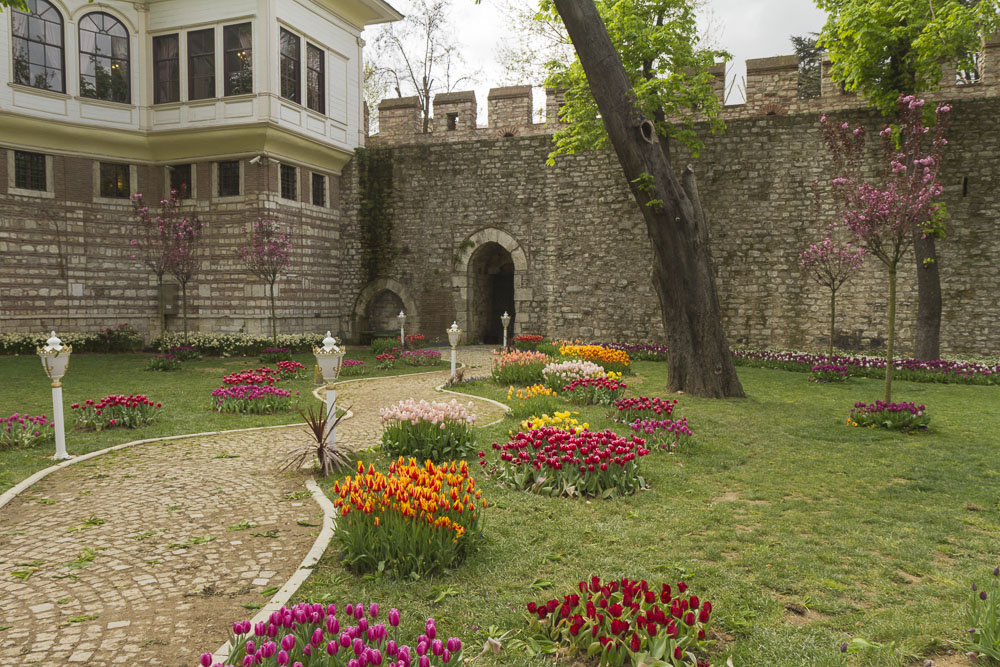 April is Tulip month in Istanbul. Gulhane Park.