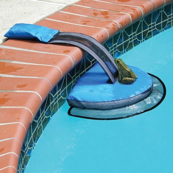 Critter Pool Ramp