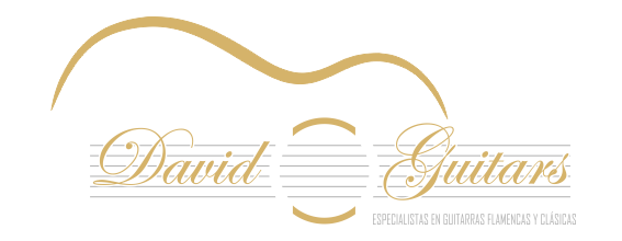 Logo david-guitars