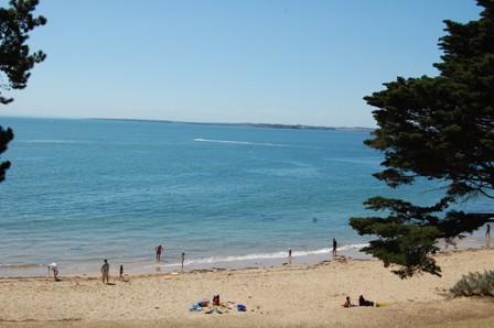 beautiful beaches (4/6)