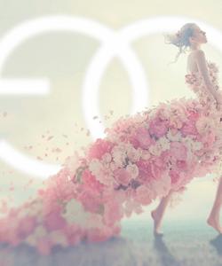Goya Floristas Wedding