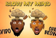 "Davido ""Blow My Mind"" Feat Chris Brown Hits 17 Million Streams on Spotify"