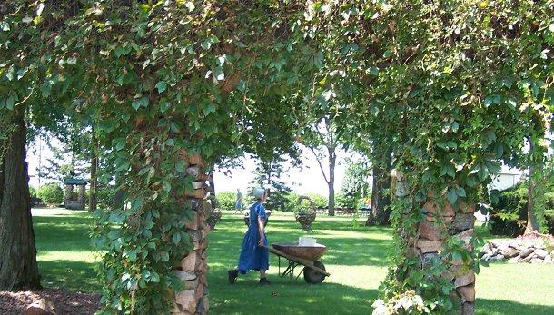 gardeningweb2