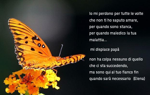 foto farfalla con testo di Elena
