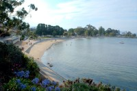 Long Beach at Sandy Bay on a summer Friday evening, with the Hobart Twilight Market in full swing