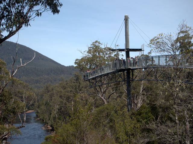 The Tahune Airwalk cantilevers out over the forest near the confluence of the Styx and Huon Rivers in southern Tasmania