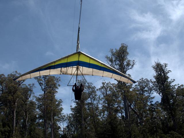 Eagle Hang Gliding at Tahune Airwalk