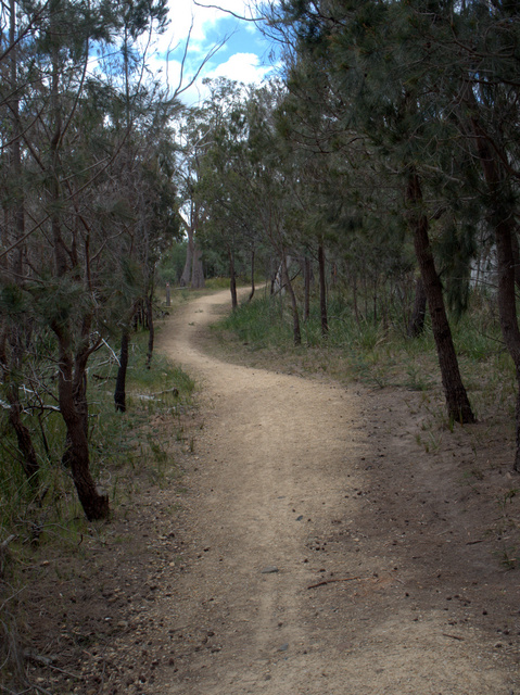 The trail includes the Waverley Flora Park in the hills above Bellerive