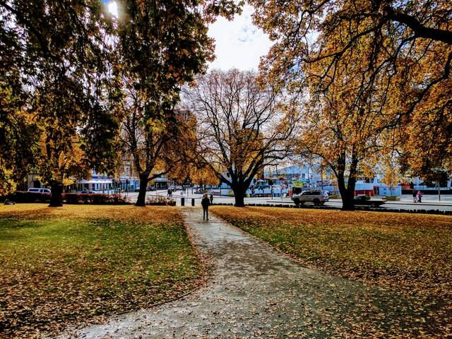 Parliament Gardens, Hobart