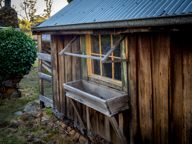 A timber trough outside the window of one of the outbuildings at Steppes Homestead