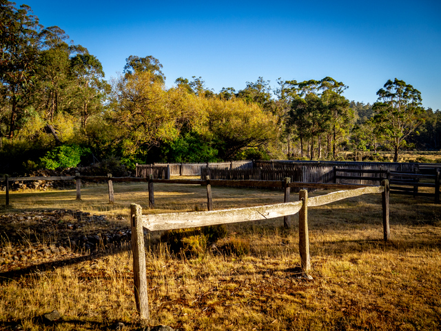 Post and rail fence at Steppes Homestead