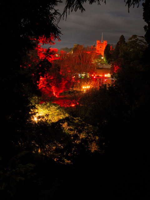 Government House from Dark Path at the Botanical Gardens