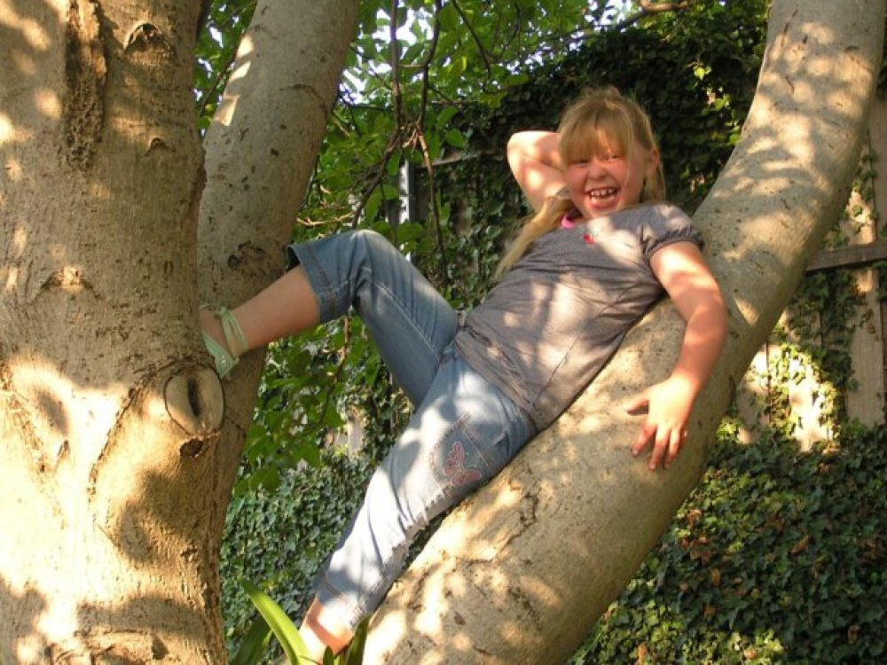 Harriette striking a pose in the branches of the walnut tree