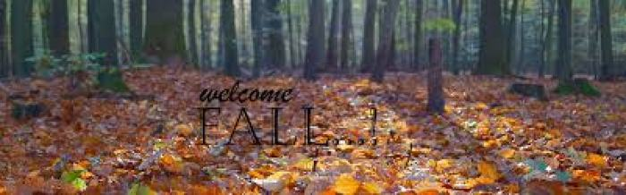 Welcome Fall!!