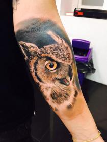 15 Mysterious Owl Tattoo Designs & Meanings AWESOME TAT