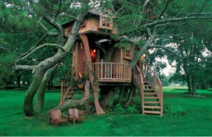 tree houses outdoor dreamy dream treehouse backyard kid build low simple easy perfect shed nest into building