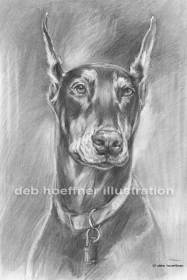 Soft realistic pencil drawings of animals and people by