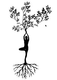 Free Stock Photo of yoga pose Silhouette Online Download