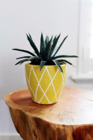 pot painting pineapple diy plant pottery pots plants paint cute summer easy painted try succulent peanut indoor planter projects simple