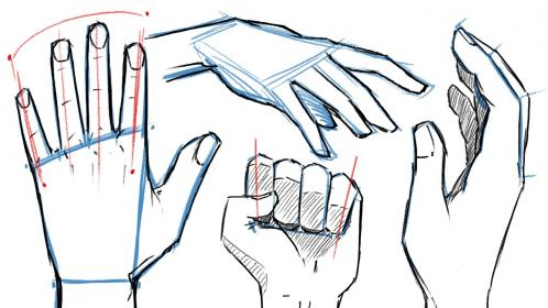 hands draw hand poses drawing jazza
