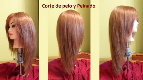 layered pelo cortes largo uve capas cut corte haircut face framing layers shaped tutorial haircuts hairstyles bangs hairstyle onettechnologiesindia cuts