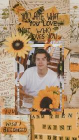 harry styles wallpapers Tumblr Harry styles wallpaper
