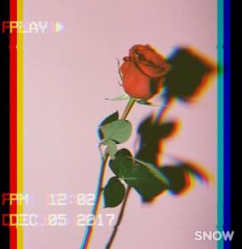 aesthetic roses wallpapers insta quotes rose cute boy glitch iphone photography vibes retro landscape quote grunge 90s обои цитаты черные