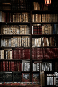 academia dark books aesthetic library bookstore quotes outfit bookshelves maroon bedroom glueck definition classic literature clothes rooms weheartit armchairoxfordscholar glasses