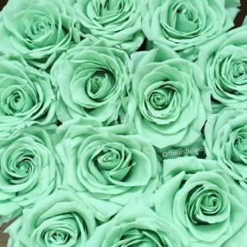 mint roses aesthetic pastel teal flower turquoise ashley rose flowers preserved ecuador fleur rhodes xxx luxe frauentaschen site