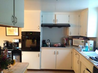 ikea cabinets friendly kuwait kitchens sophisticated japan tool planner yet sempress