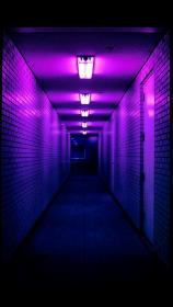 aesthetic purple dark violet lavender colors neon wall collage