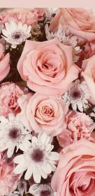 aesthetic pink wallpapers rose iphone roses phone unique glitter flower backgrounds floral pretty edge rosa android 3d