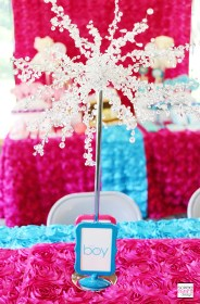 reveal gender party decorations baby cake host own soiree fabulous