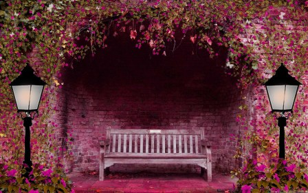 Romantic Bench Mac Wallpaper Download AllMacWallpaper