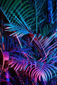 neon aesthetic wallpapers backgrounds objects wallpaperaccess pearly