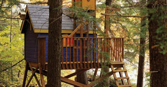 diy treehouses build dream treehouse kid lovely true come porch backyard yourself living projects self dreaming theselfsufficientliving advice