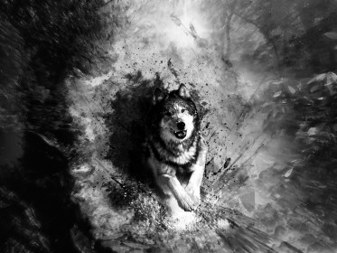 wolf painting hd wallpapers abstract background backgrounds quality cool animal dog definition resolution dark wolves light desktop 1600 1200 drawing