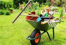 Como Abrir Uma Empresa de Jardinagem