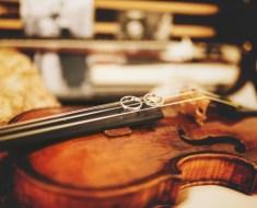 curso de violino online spalla di base assinatura mensal