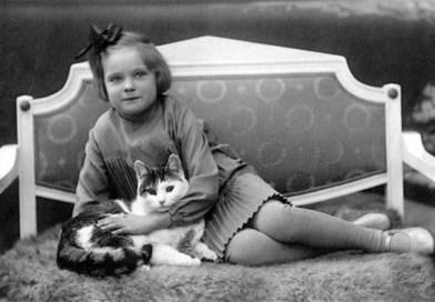 Девушки и коты
