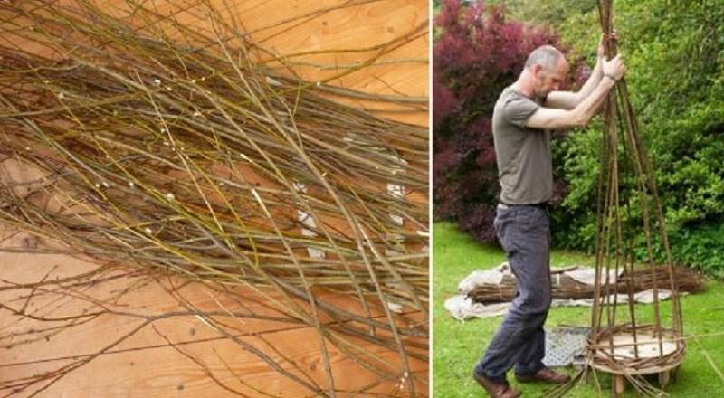 Сосед нарезал палочки вербы и подождал, пока они укоренятся, а затем начал творить…