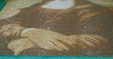"""""""Мона Лиза"""" из 24 тысяч крекеров"""