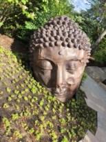 Japanes Garden 4